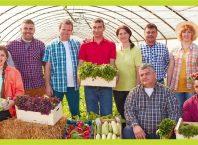 cooperativa agricola carrefour