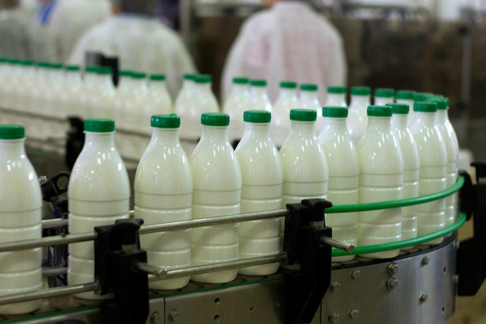 fabrica lapte