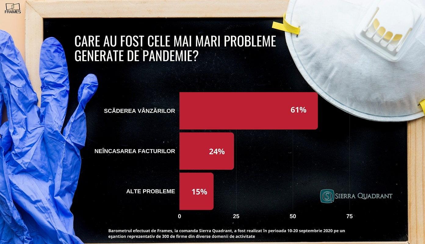 afaceri pandemie